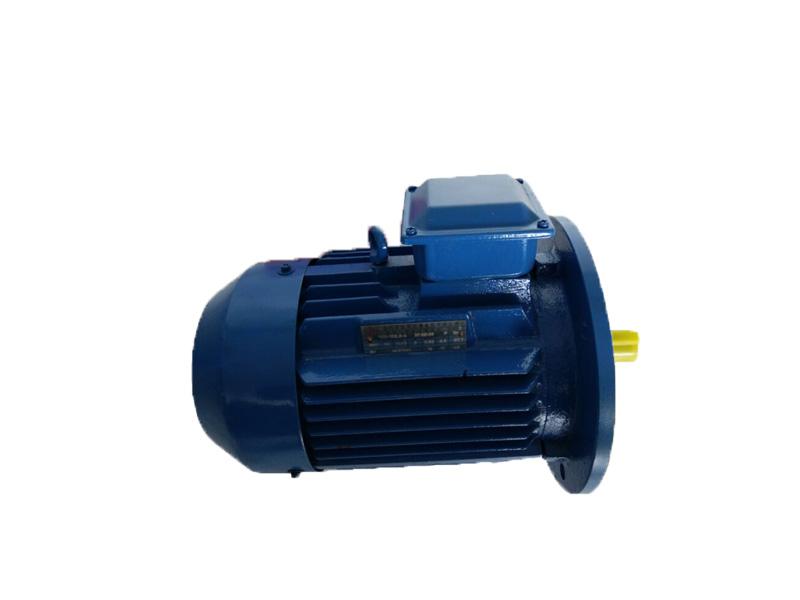 YE3-B5(铁)超高效电机